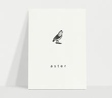 aster_wit_geboortekaart.png