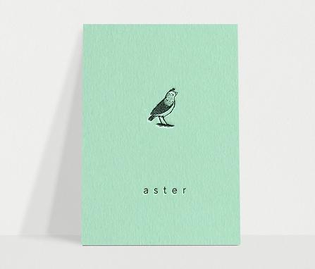 aster-geboortekaart.png