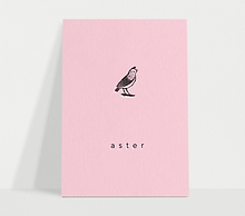 aster_pink_geboortekaart.png