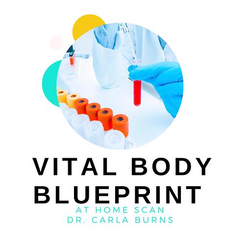 Vital Body Blueprint Scan