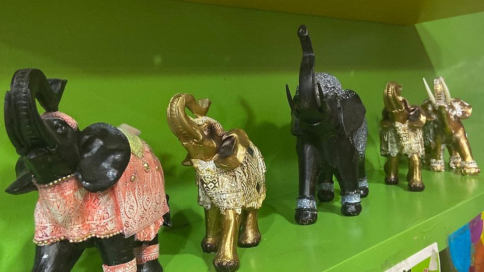 IBTU Elephants