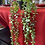 Thumbnail: IBTU (Not Real/Look Real)  Plants