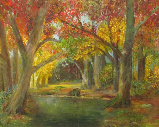 Ilona Bobbitt, Autumn Forest