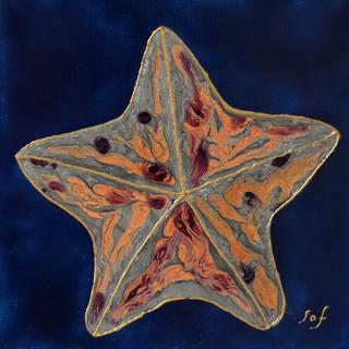 Sophie Adams, Silver Starfish