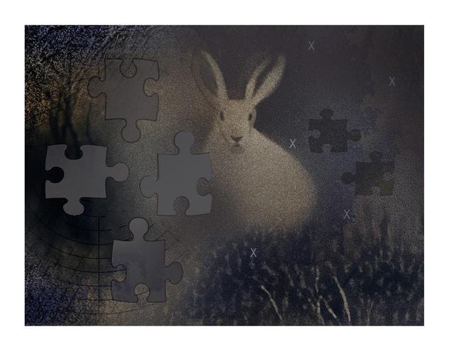 Robert Hunter (VA), Down The Rabbit Hole and Back