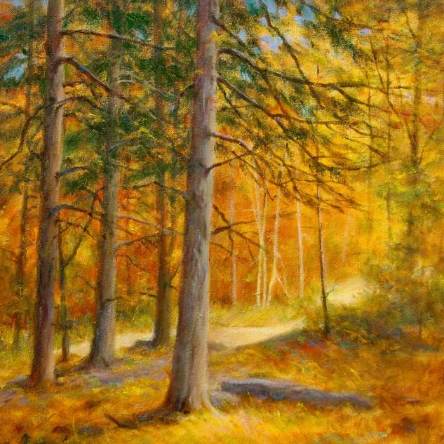 Revelle Hamilton, Forest in Autumn