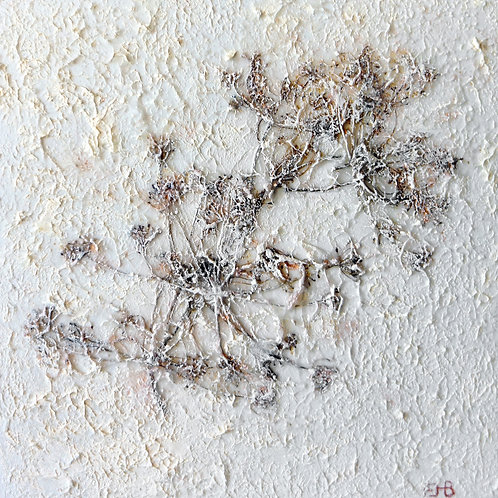 Edrie Bays, Winter Dill