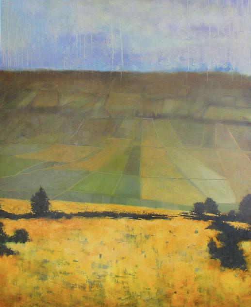 Russell Voelker (VA), Distant Fields