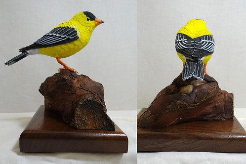 Stan Fettig, American Goldenfinch