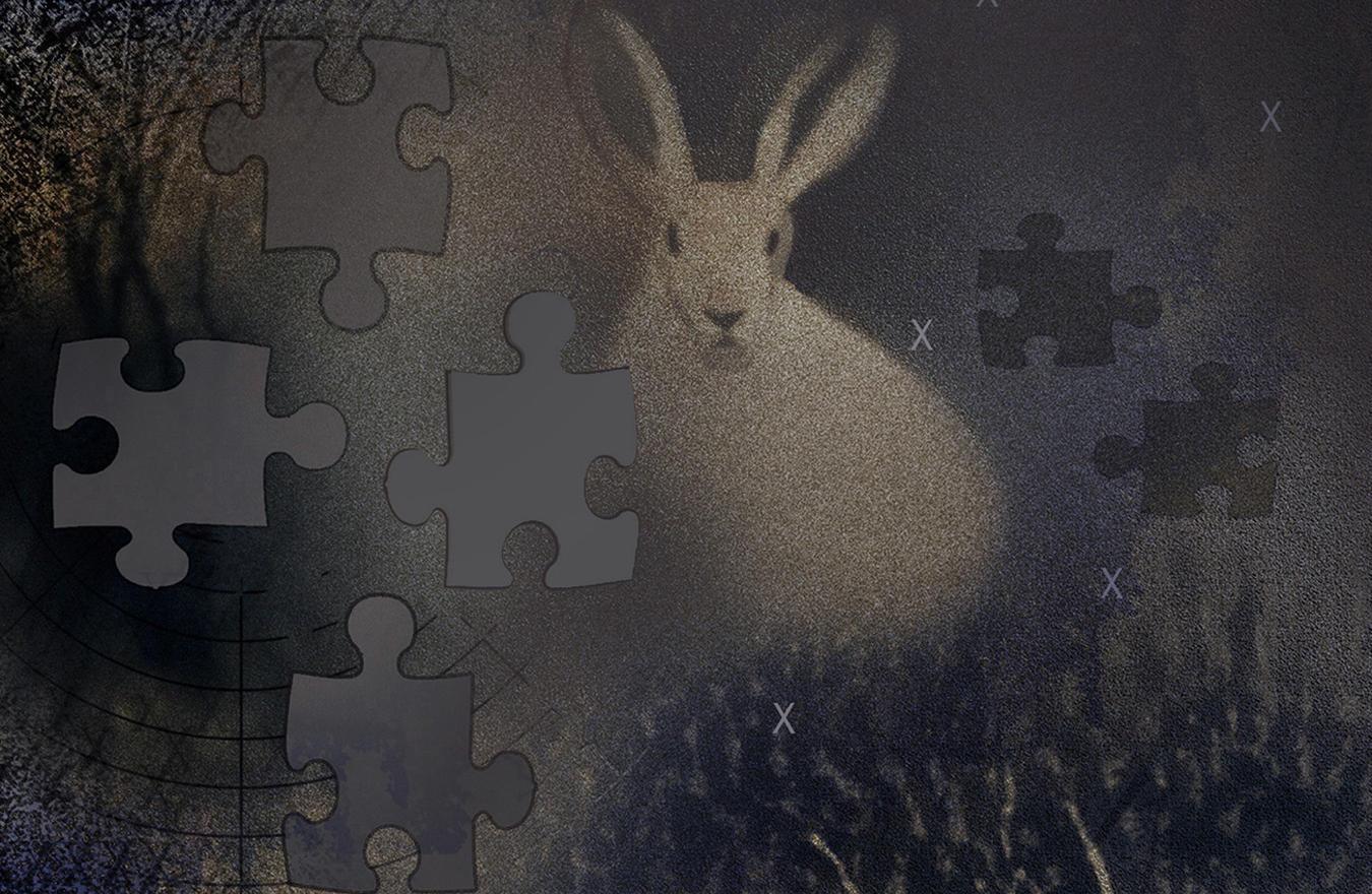 Juror's Choice, Robert Hunter, Down the Rabbit Hole and Back