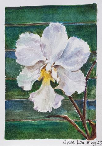 Painter: Jean Lau