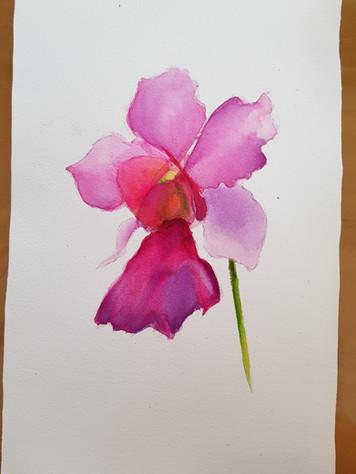 Painter: Lily Goh