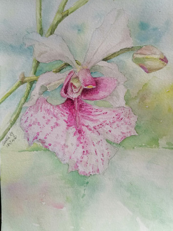 Painter: Cecilia Ng