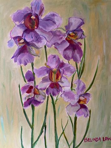 Painter: Belinda Low