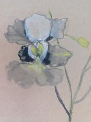 Painter: Leong Lai San