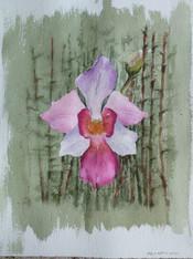 Painter: Melissa Tan