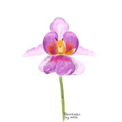 Melissa Tan (paintsink)