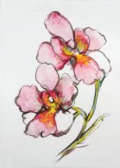 Painter: Marcus Lim