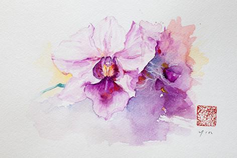 Painter: Yin Chua