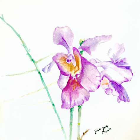 Painter: Tan Sue Yng
