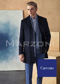 marzonicarcoatcoverpic copy.jpg