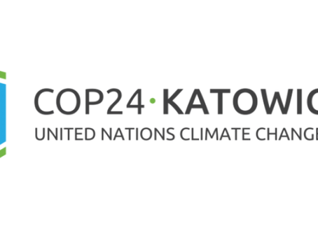 Teraloop at COP24