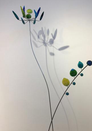 Cactus flower and fern aqua