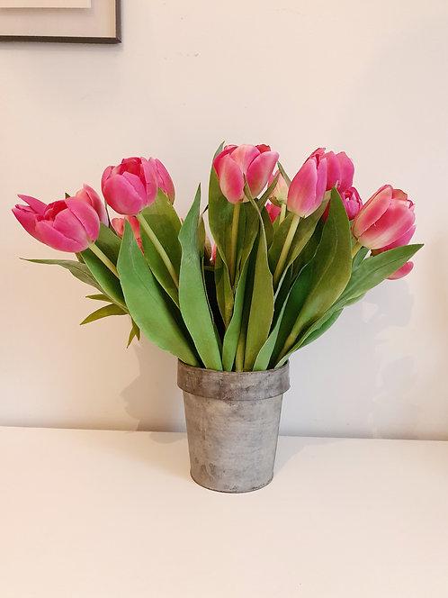 Tulip Mix Pink
