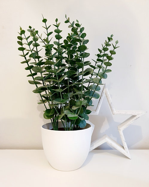 Artificial Eucalyptus Plant in White Pot