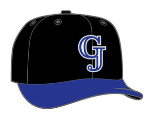 Root for the Home Team: Grand Junction Rockies Logo Design