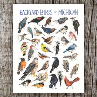 BackyardBirds w.png