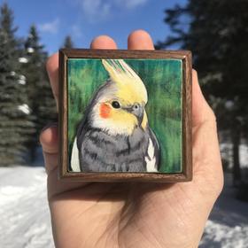 Cockatiel Memorial Box