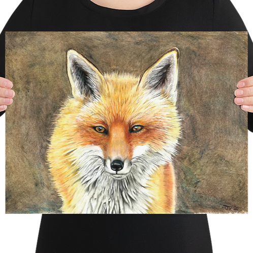 Red Fox Canvas