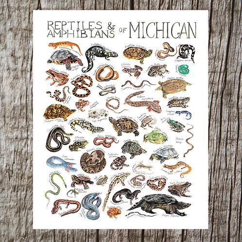 Reptiles & Amphibians of Michigan Print by Brush & Bark