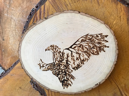 Woodland Eagle on Basswood