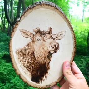 Elk Wood Burning