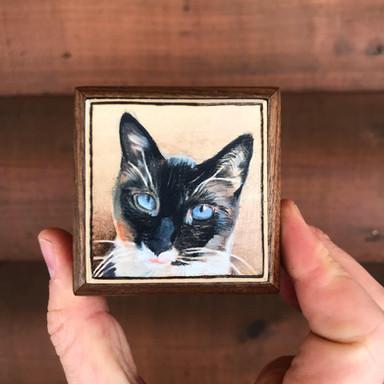 Cat Memorial Box
