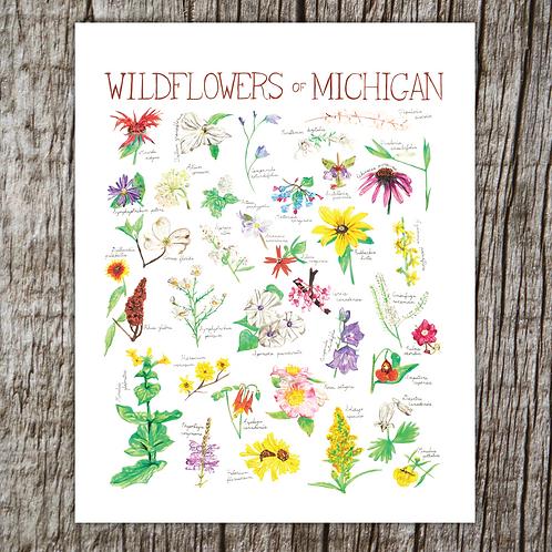 Wildflowers of Michigan by Brush & Bark
