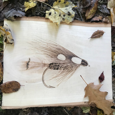 Fly on Basswood