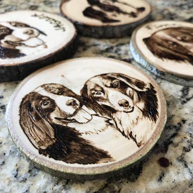 Pet Coaster