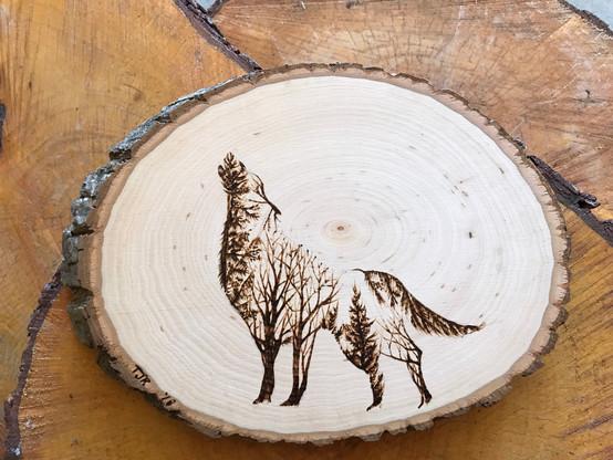 Wolf on Basswood