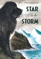 Star-in-the-Storm-Cover.jpg