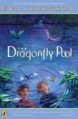 drafonfly-pool-580x887.jpg