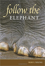 Follow-the-Elephant.jpg