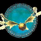 circle quiddich blue copy 2.png