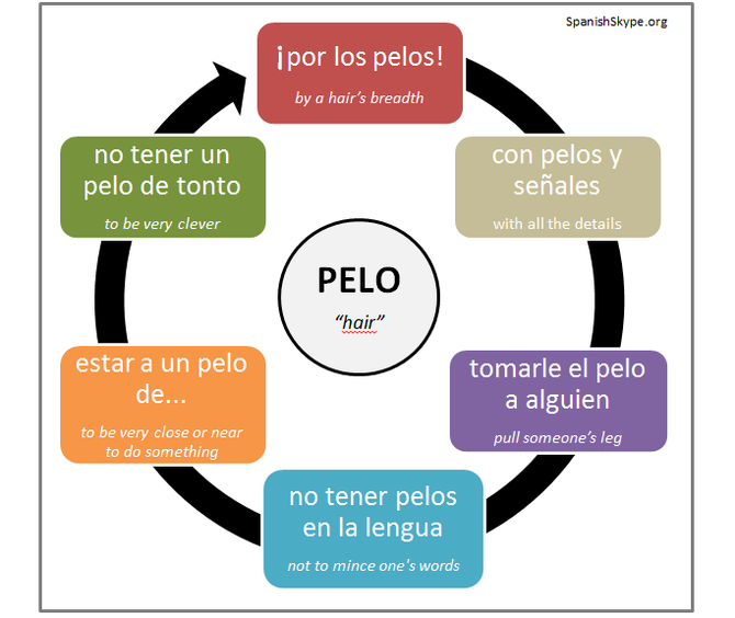 "8 Idiomatic expressions with ""PELO"""