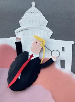 Trump Grenade
