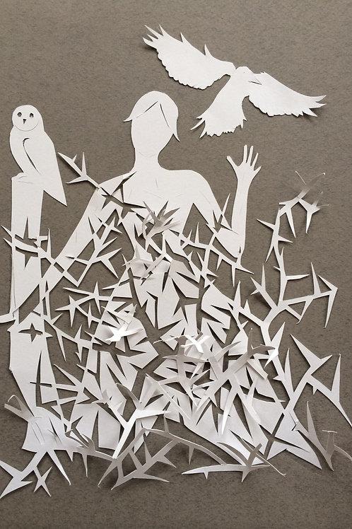 Owl & Crow