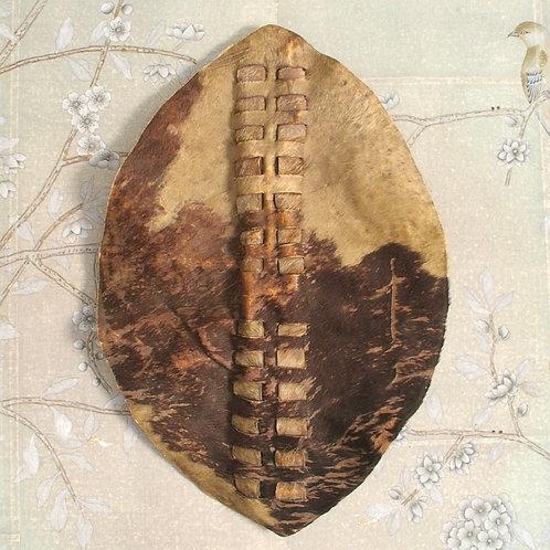 A Zulu shield. 19th C.