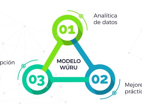 El modelo Wúru para la gestión de salud basada en evidencia
